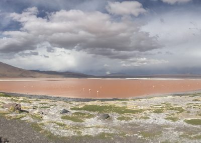 Red Lagoon (Laguna Colorada)